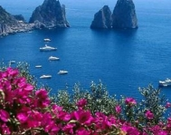 Capri - LightBluTour